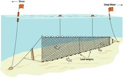 Liman Ağ - Barbun Uzatma Ağı 100 M Sade 2 Numara İp